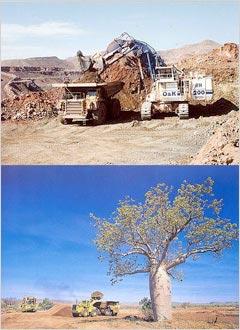 ピンクダイアモンドの鉱山物語