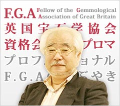 プロフェッショナル F.G.A