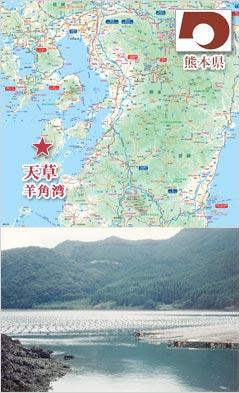 熊本県天草 羊角湾にある真珠の養殖場