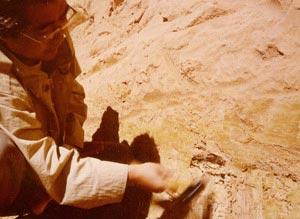 鉱脈 オパール発見